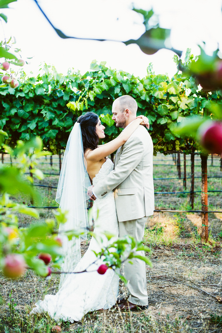 vineyard-wedding-vine-hill-house-sebastopol