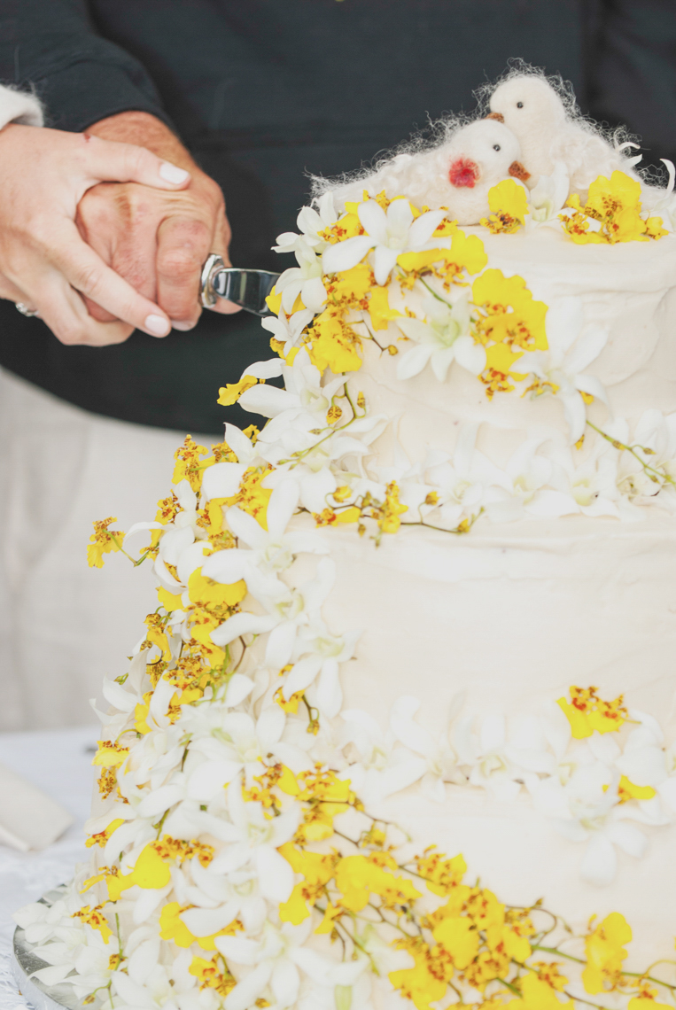 wedding-cake-sebstopol-diy