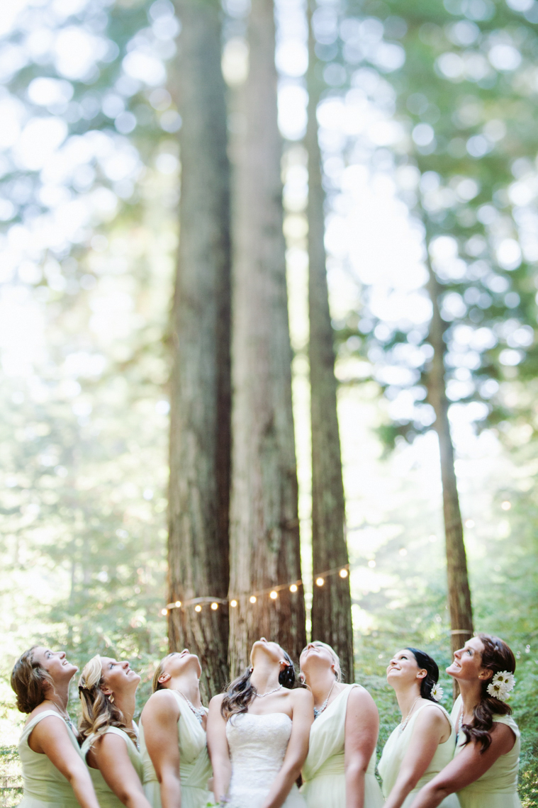 redwoods-wedding-sebastopol-bride