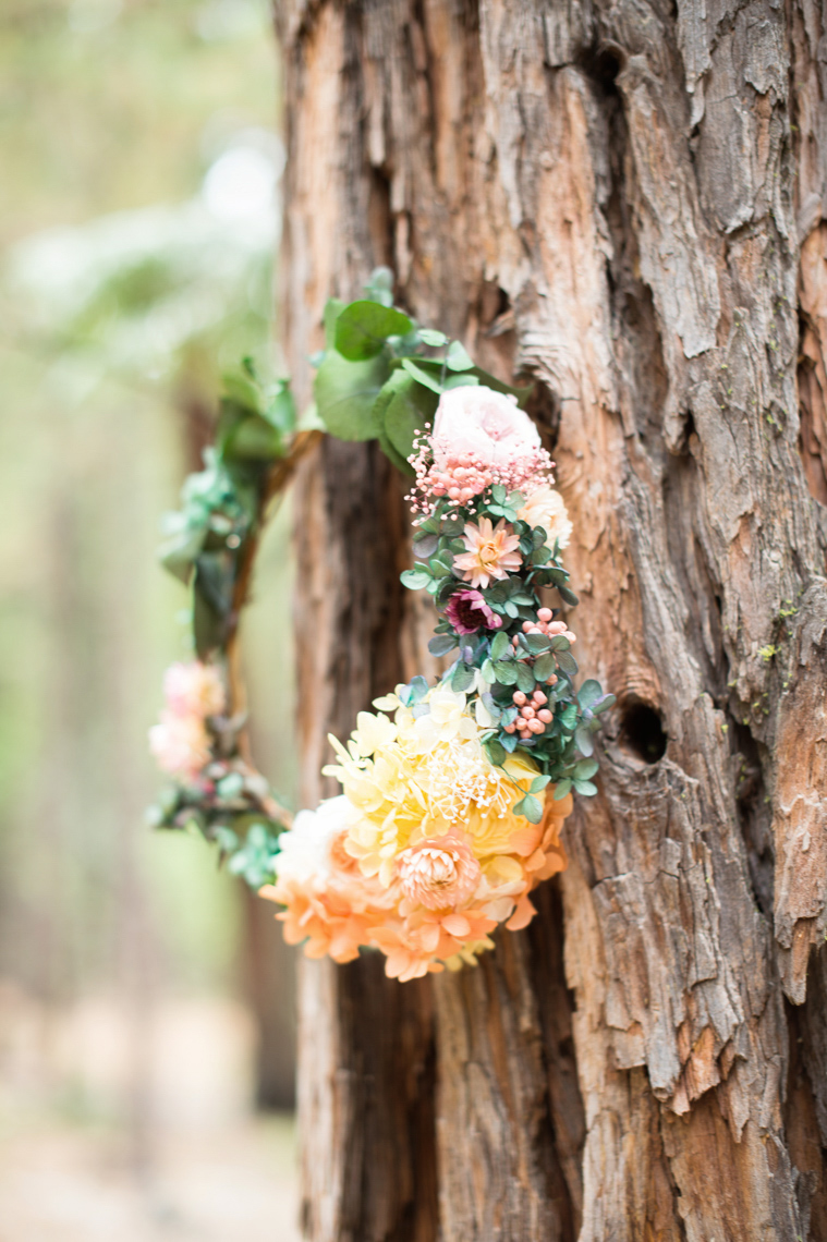 yosemite_wedding_evergreen_lodge_crown