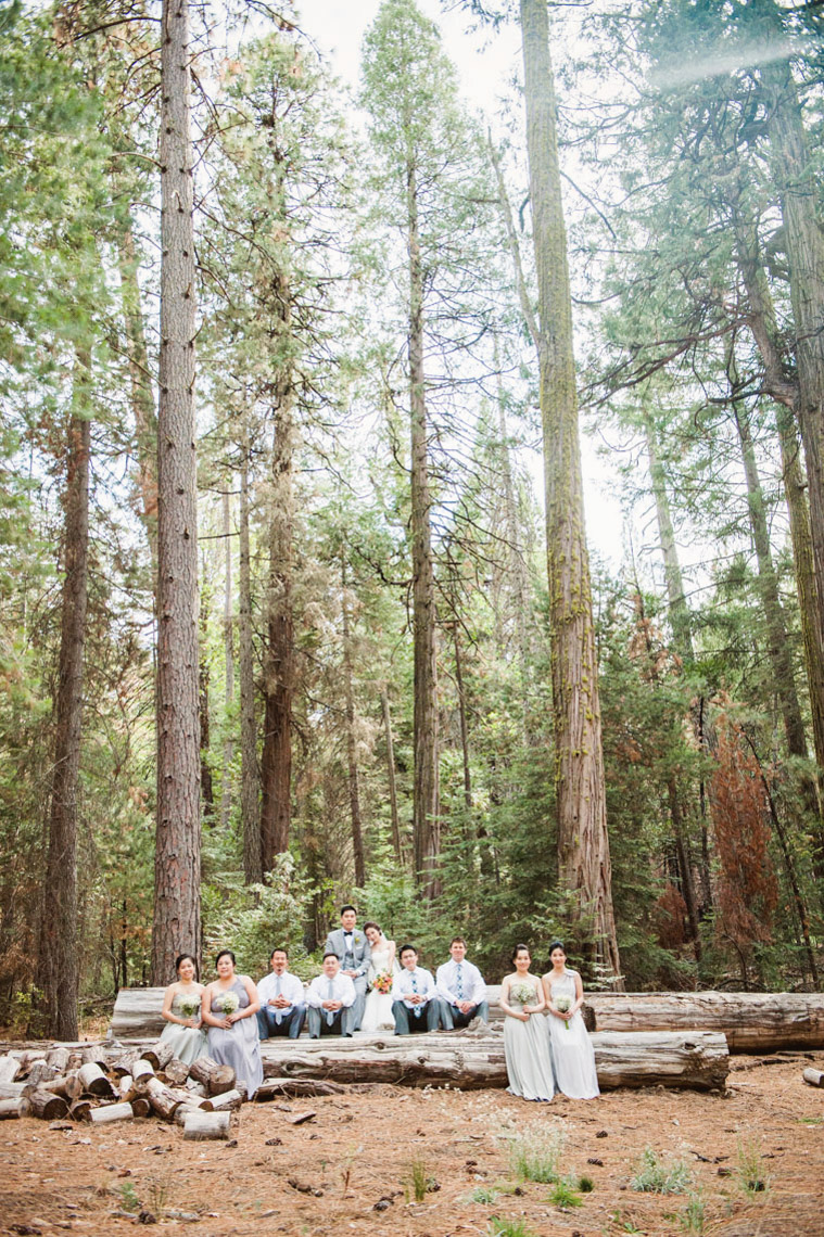 yosemite_wedding_evergreen_lodge_wedding_portrait_trees